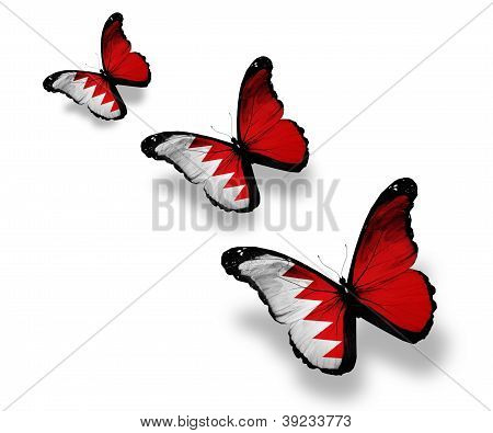 Three Bahraini Flag Butterflies, Isolated On White