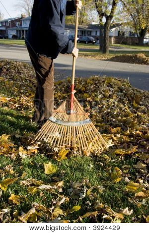 Raking Leaves During Autumn Afternoon