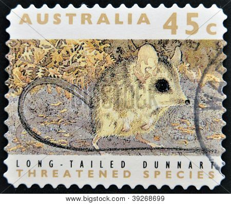 stamp printed in Australia dedicated to threatened species shows long-talied dunnart