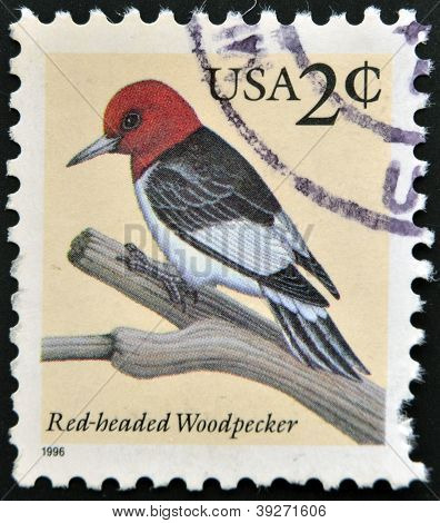 UNITED STATES OF AMERICA - CIRCA 1996: A stamp printed in USA shows red-headed woodpecker circa 1996