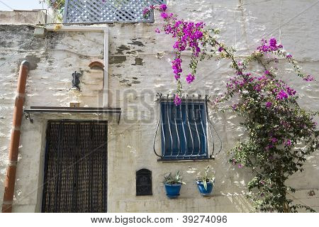 Mediterranean Street. Qhite Town