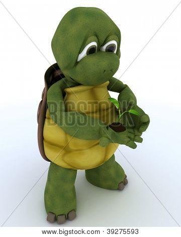 3D render of a tortoise nurturing a  seedling plant