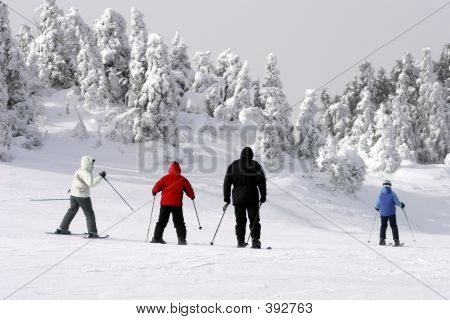 Family Skiing Downhill