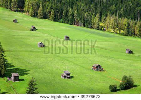 Green Pastures - Sexten - Italy