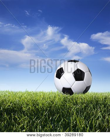 Profile Of Soccer Ball In Grass Against Blue Sky