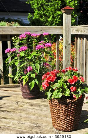 Flower Pots On House Deck