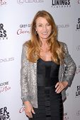 LOS ANGELES - NOV 19:  Jane Seymour arrives to the 'Silver Linings Playbook' LA Premiere at Academy
