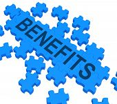 Benefits Puzzle Shows Company Rewards