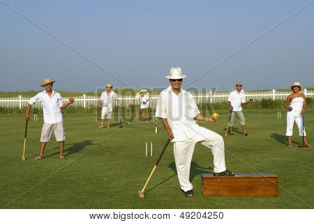 Group of friends playing croquet