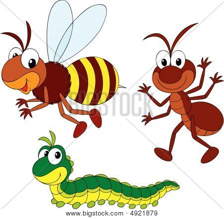 Bee, Ant And Caterpillar