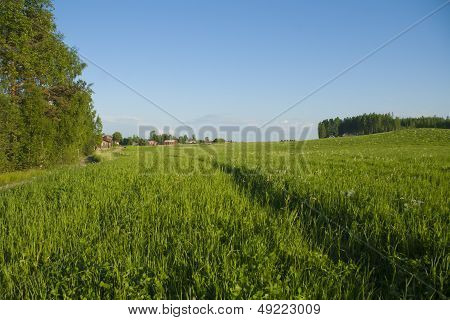 Country side in Finland