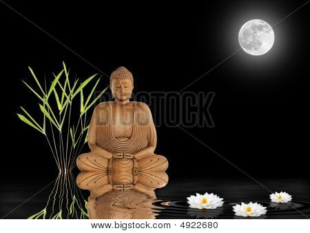 Zen Garden Peace