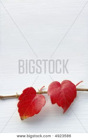 Two natural hearts
