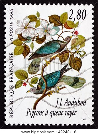 Postage Stamp France 1995 Band-tailed Pigeon, Bird