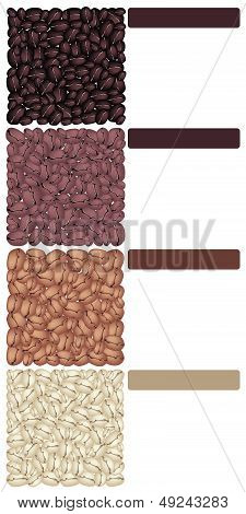 Four Type Of Roasted Coffee Beans Banner