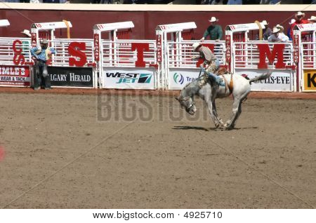 Cowboy Riding Bucking Bronco