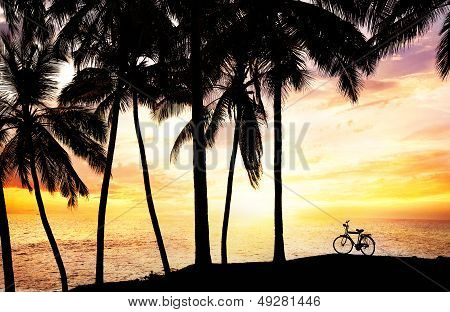 Bicycle Silhouette On The Beach