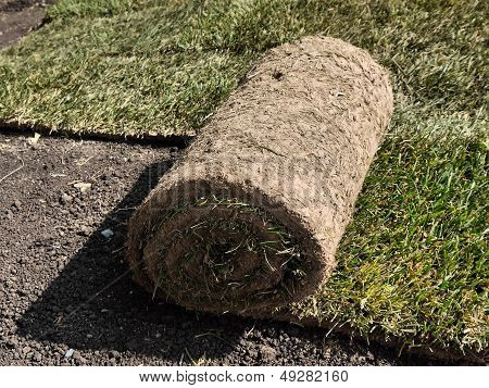 roll of lawn