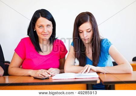 Beautiful Students Studying