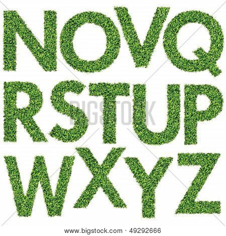 Set of Green Grass Alphabet N-Z