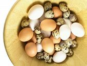 picture of b12  - eggs - JPG