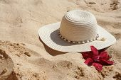 image of sand lilies  - beach hat and flower in the sand - JPG