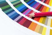 stock photo of interior decorator  - choosing the color from the spectrum  - JPG