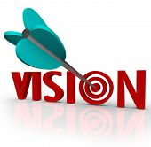 stock photo of bulls  - The word Vision with an arrow in a bulls - JPG
