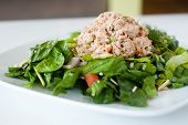 foto of romaine lettuce  - fresh chopped tuna salad on a white plate - JPG