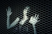 foto of smuggling  - Young woman behind a metal fence - JPG