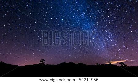 Canary Night Sky