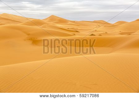 Erg Chebbi desert Morocco, North Africa