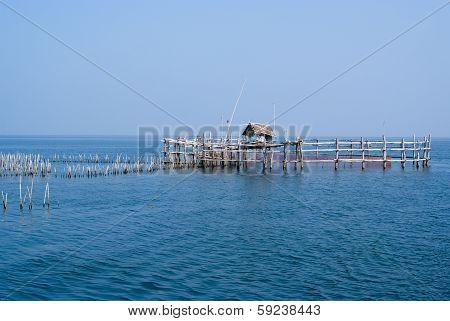 Fishing Trap / Fishing Equipment