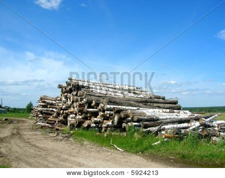 Stock of logs
