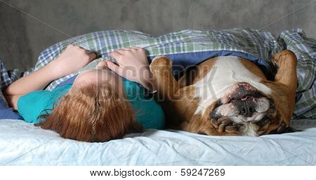 dog in bed - english bulldog laying in bed with preteen girl