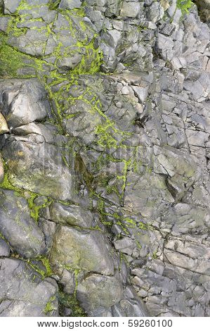 Rock Detail Around Perros-guirec