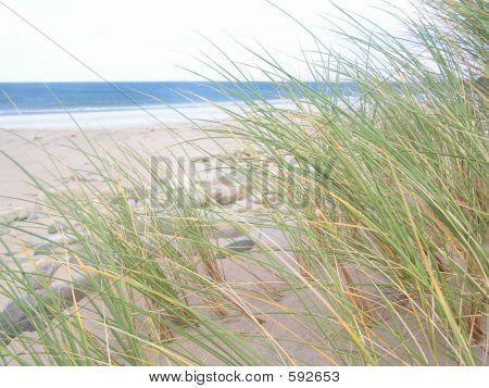 Dunes At Dugort