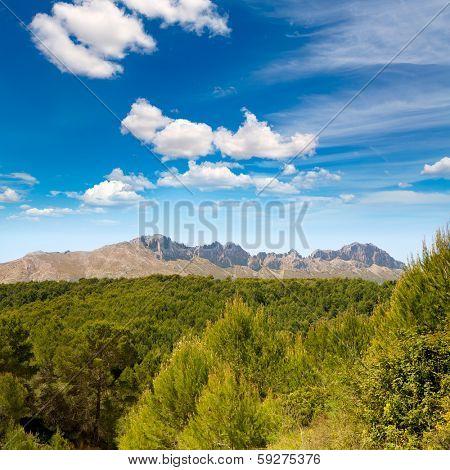 Calpe Alicante sierra de Bernia y Ferrer mountains and Mediterranean pine forest Spain