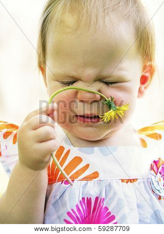 a cute toddler sniffing a dandelion and making a face