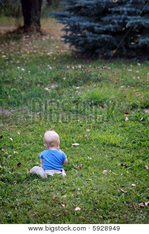 Baby Boy Alone On Grass