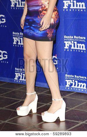 SANTA BARBARA - FEB 1: Heather Braverman at the Outstanding Performer Of The Year Award at the 29th Santa Barbara International Film Festival on February 1, 2014 in Santa Barbara, CA