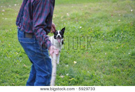 Man Throwing Stick
