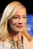 SANTA BARBARA - FEB 1: Cate Blanchett at the Outstanding Performer Of The Year Award, Arlington Thea