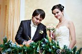 pic of solemn  - Solemn registration of marriage in the Wedding Palace - JPG