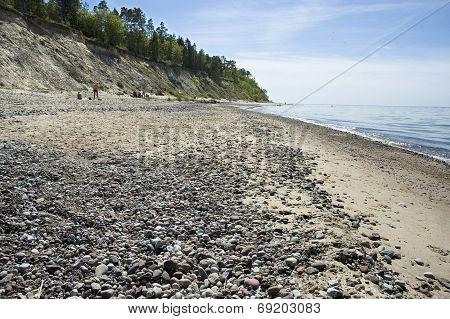 Latvia,  Kurzeme. Beach And Steep Coast Of The Baltic Sea.