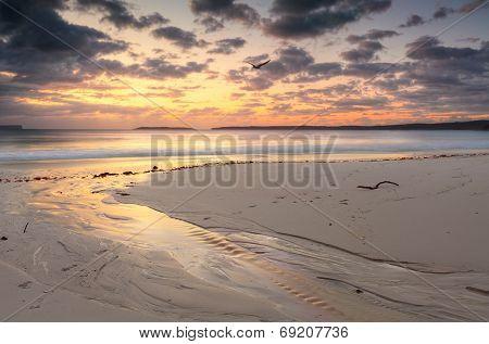Sunrise Jervis Bay Australia