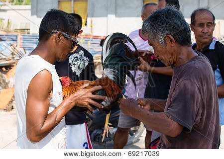 Unidentified Men During Philippine Traditional Cockfighting Competition.