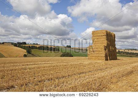 Harvest Bale Stack