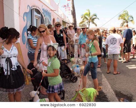 Dog Parade Line Up