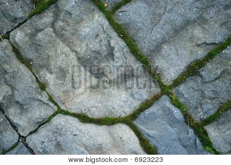 Close Up Of Patio Stones Lined With Moss